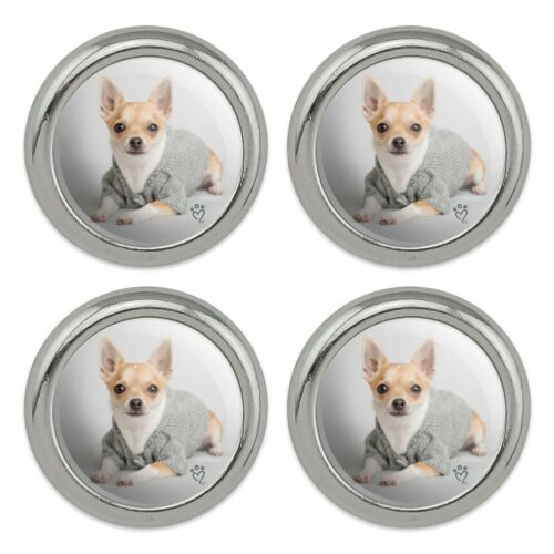 Set of 4 Chihuahua Little Dog in a Sweater Metal Craft Sewing Novelty Buttons