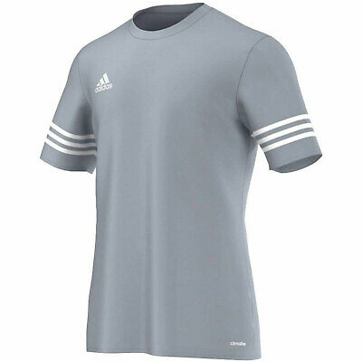 Elemental Nutrición Normalización  adidas Entrada 14 Football T-Shirt Silver and White - Boys and Mens Sizes |  eBay