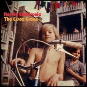 ESSEX-GREEN-Hardly-Electronic-LP-VINYL-Europe-Merge-10-Track-Limited-Edition