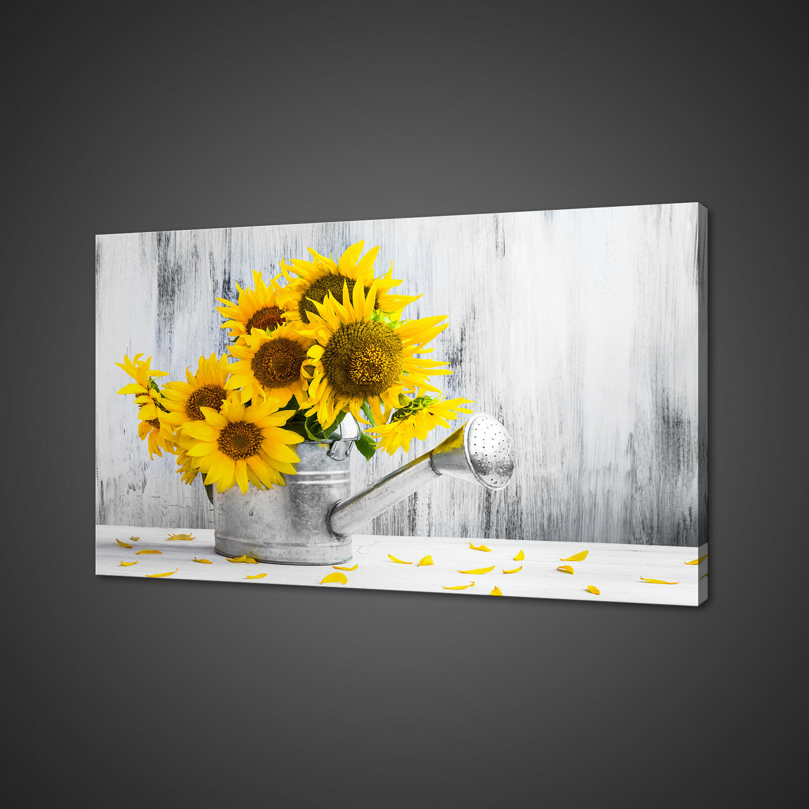 SUNblumen WATERING CAN CANVAS PICTURE drucken wand kunst zuhause DECOR FREE DELIVERY