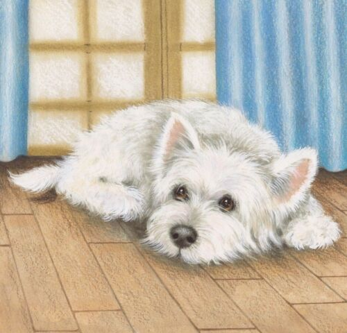 "LIMITED EDITION PRINT WESTIE ""SLEEPY WESTIE"" ORIGINAL PAINTING BY SUE BARRATT"