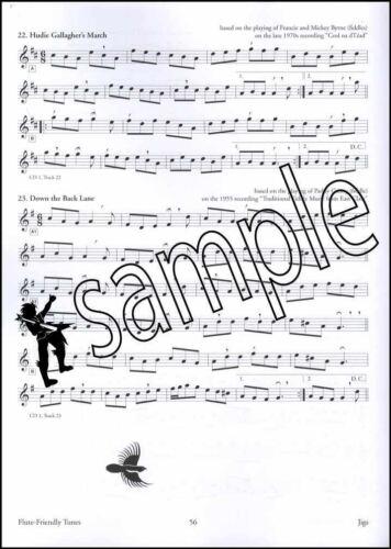 150 Gems of Irish Music for Flute Sheet Music Book with Audio Grey Larsen