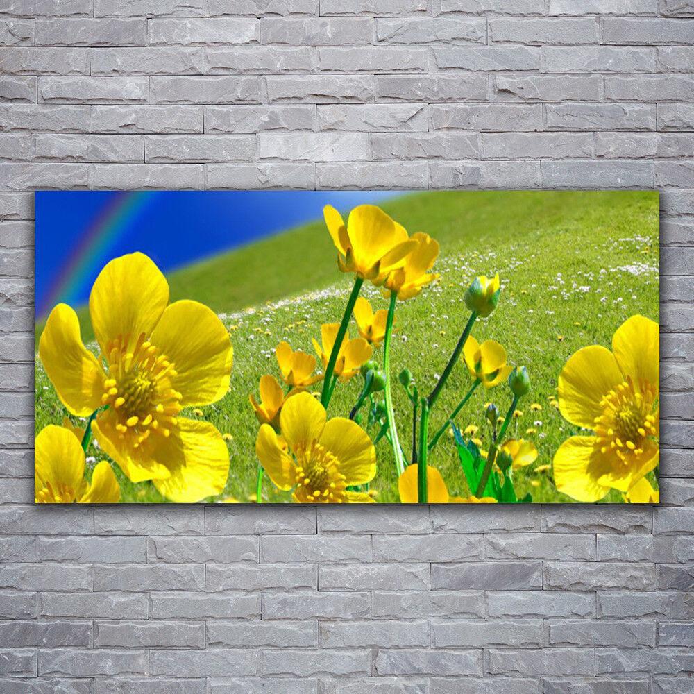 Photo sur toile Tableau Image Impression 120x60 Prairie Fleurs Arc En Ciel