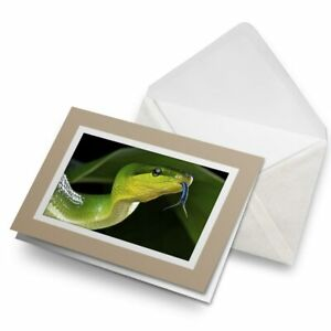Greetings-Card-Biege-Awesome-Cool-Green-Snake-Animal-8313