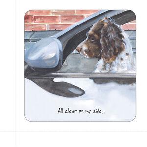 Le-petit-chien-RI-Cork-sous-verres-nouveau-vendu-pour-Hospice-beaucoup-de-conceptions
