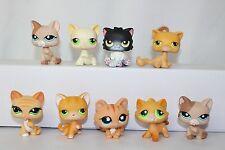 Littlest Pet Shop Cat Lot Kitten Orange Persian Black Cream Tan Flower 679 1363