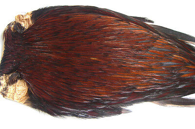 Cou coq Indien GRIS CLAIR montage mouche seche mosca fly tying rooster neck dry