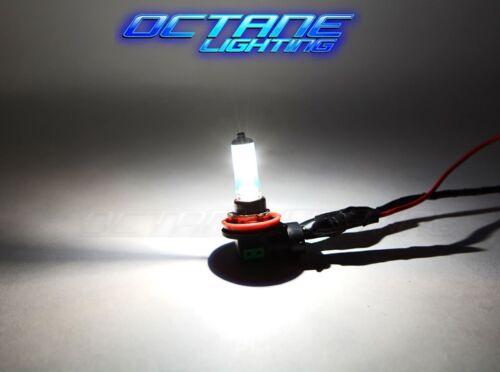 9005 Halogen Xenon Plasma HID Headlight Fog Lamp Headlamp Super White Light Bulb