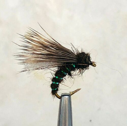 SEDGEHAMMER ELK HAIR CADDIS DRY FLY FISHING FLIES 12 X SIZE #16 FLIES
