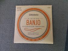 D/'Addario EJ55 5 String Banjo Philosopher Bronze Medium 10-23 j55
