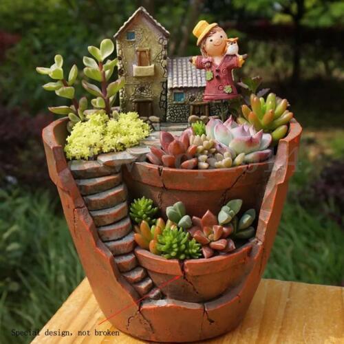 Succulent garden ideas collection on ebay for Cactus in pots ideas