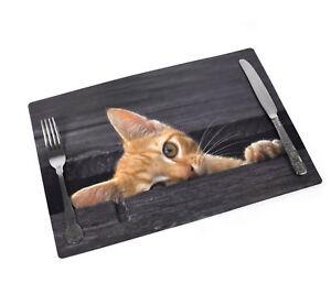 Catseye-Salvamantel-43-2cm-x-27-9cm