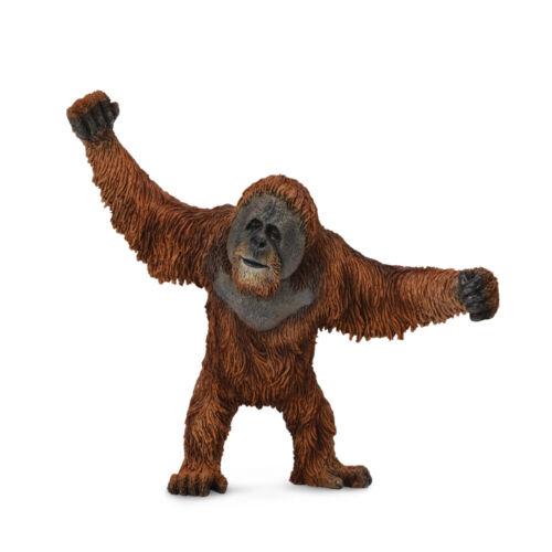 L CollectA Wild orang outan col88730