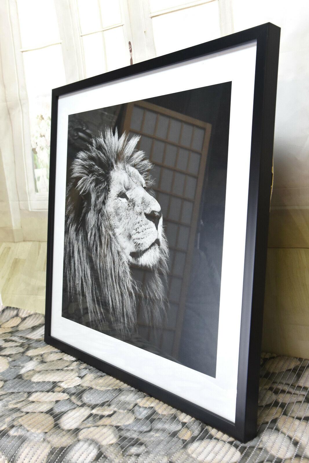Impressionen Bild Löwe Wandbild schwarz  weiß