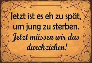 Zu-spaet-um-jung-zu-sterben-Blechschild-Schild-gewoelbt-Tin-Sign-20-x-30-cm-FA1699