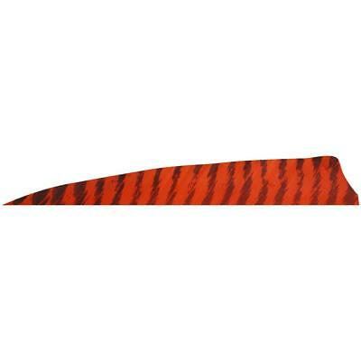 """Gateway Batwing Feather Orange 2/"""" Right Wing 50 Pack"""
