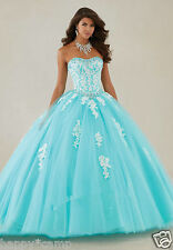 Ball Gowns Quinceanera Dresses Appliques Lace Bridal Gowns Sweet 15 Custom 4-16