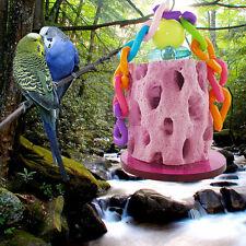 Hamster Kaninchen Chinchilla Papagei Kalzium Zähne Schleifen Stein Spielzeug