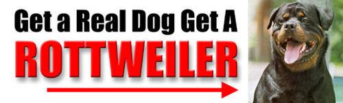 """/""""GET A REAL DOG GET A ROTTWEILER/"""" Sticker"""