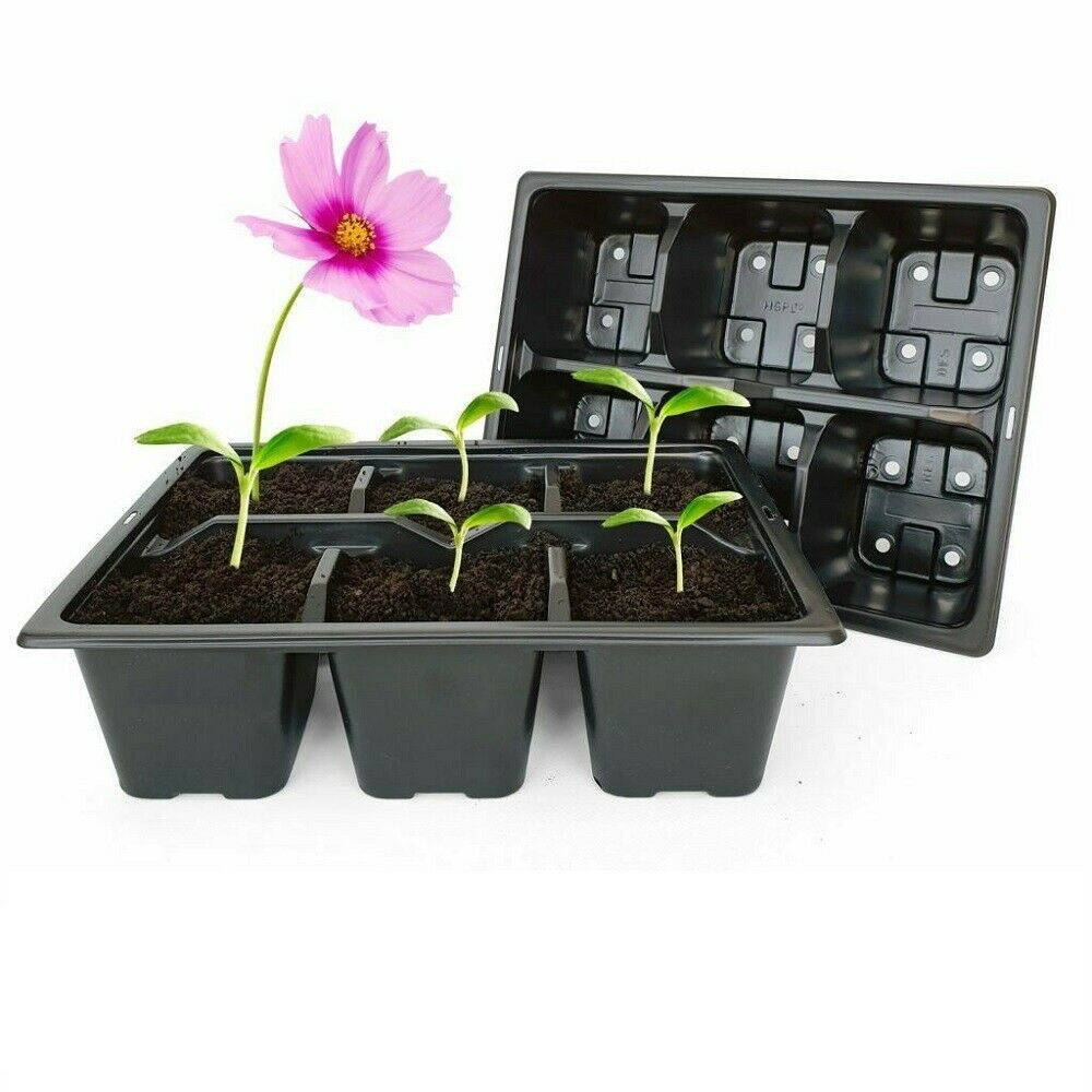 6 Cell Packof 40 Professional Grade Seeds Trays Bedding Plant Seed Propagat Tray