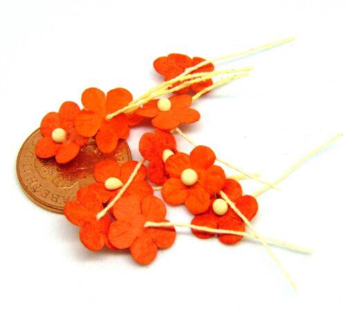 Échelle 1:12 10 Loose Orange papier marguerites tumdee maison de poupées miniature fleurs