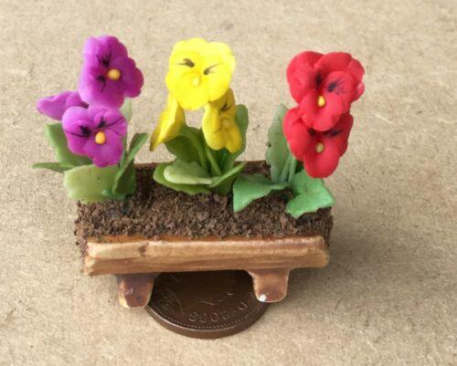Escala 1:12 mezclado pensamientos en una cerámica Valle tumdee Casa De Muñecas Jardín De Flores