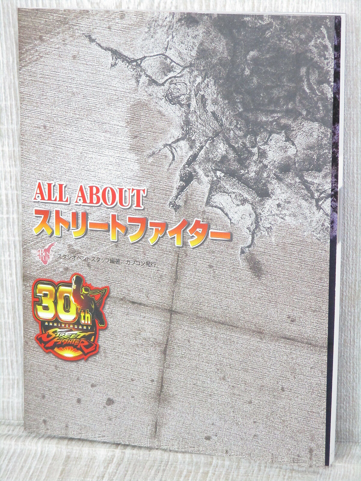 rue Fighter All About 30th Anniv. Art Ventilateur Livre Japon  2003 Limitée  dessins exclusifs