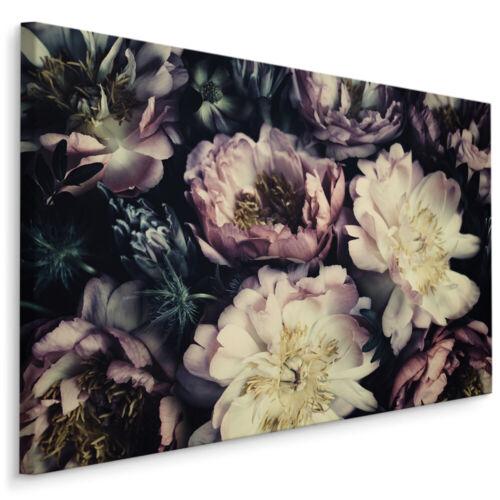 CANVAS Leinwand Bilder XXL Wandbilder Kunstdruck Pfingstrosen Blumen Natur 380