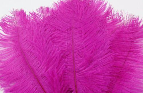 Éventail Déguisement, 10 Coloured Plumes D'Autruche 22-25cm Fascinateur