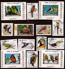 Tous pays Les divers oiseaux de la nature Aigle,Perroquet,Perruche , divers 41T6