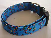 Charming Blue W/ Red, Green, Yellow, Orange, Purple & Blue Stars Dog Collar