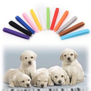 12x-Nylon-Small-Dog-Adjustable-Pet-Identification-Collars-For-Puppy-Kitten-Cat