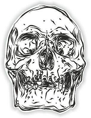 Skull vinyl graphic sticker decal car Bumper motorcycle helmet guitar