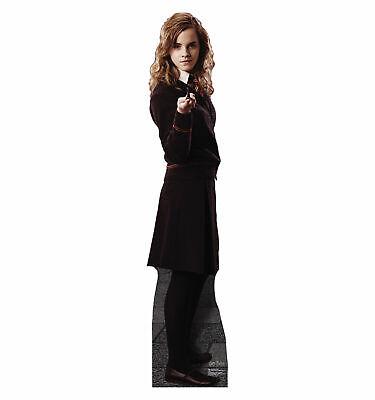 Harry Potter holding wand LIFESIZE CARDBOARD CUTOUT standee Daniel Radcliffe