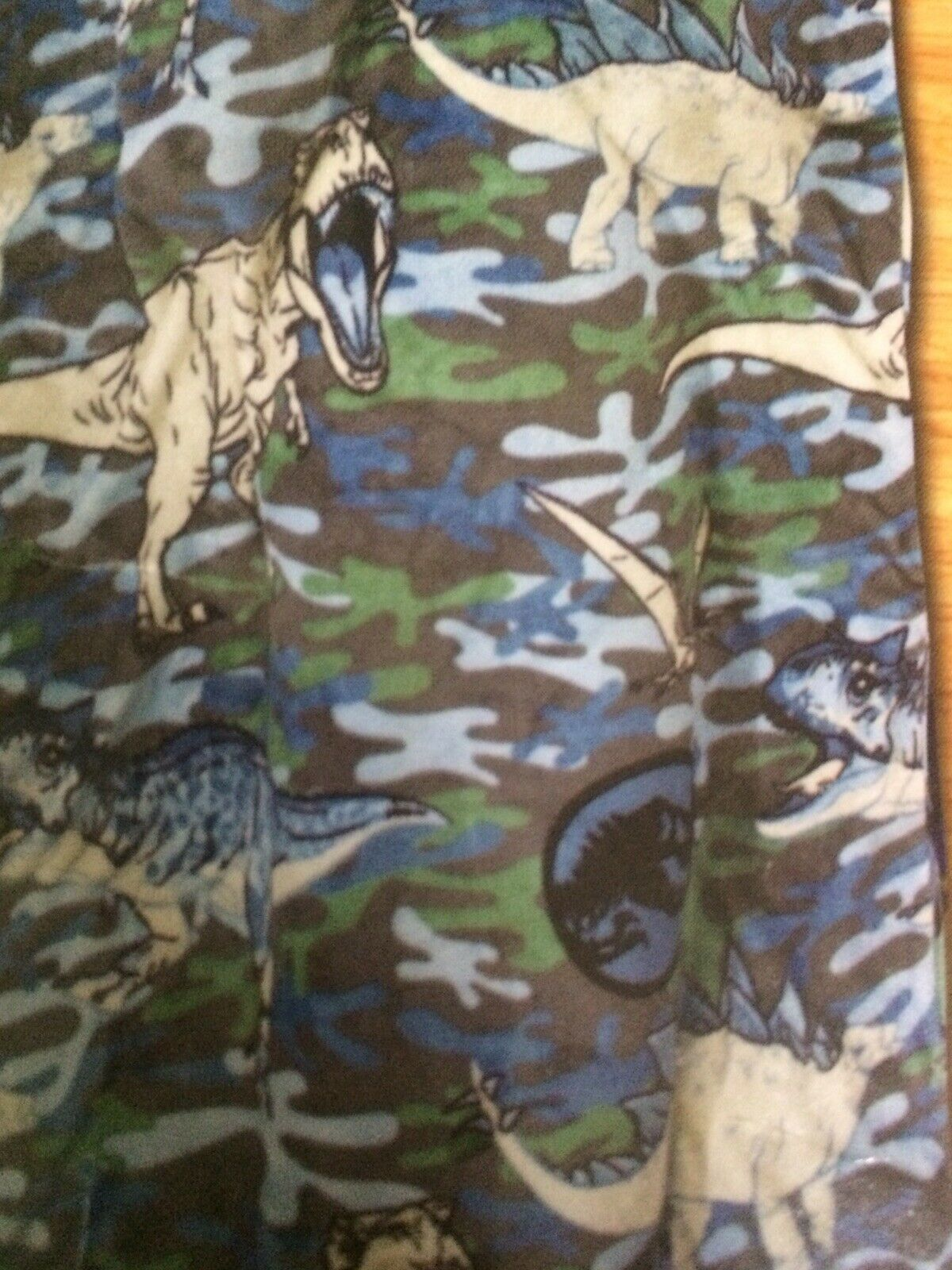 Boy Throw Blanket Jurassic World Dinosaur Blanket Super Soft and Cuddly Hooded Step in Blanket 30 x 54