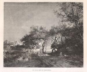 1877 Bordighera xilografia