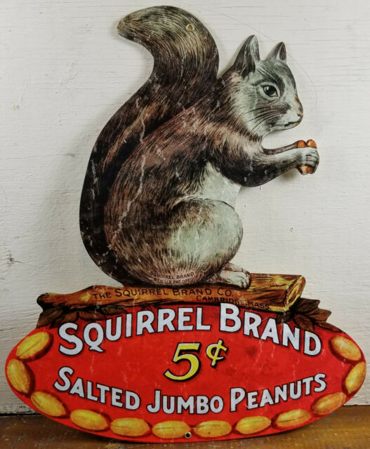 Squirrel Brand 5¢ Salted Jumbo Peanuts Cambridge MA Massachusetts Metal Adv Sign