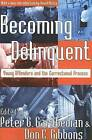 Becoming Delinquent: Young Offenders and the Correctional Process by Transaction Publishers (Paperback, 2005)