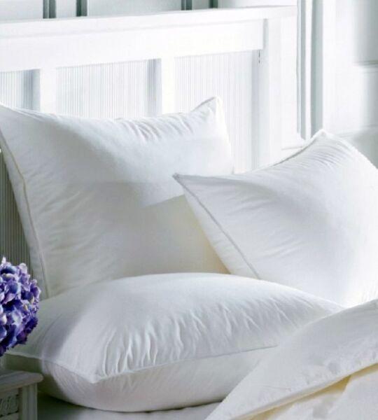 (2) Queen Feather Pillows - Custom Made In Our Shop! Producten Worden Zonder Beperkingen Verkocht