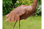 3485 Stunning Metal Handmade Rustic Bird//Heron Home Patio Garden Ornament