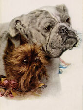 BRUSSELS GRIFFON & BULLDOG CHARMING DOG GREETINGS NOTE CARD TWO BEAUTIFUL DOGS