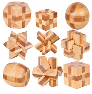 Details about Brain Teasers Wooden Puzzles Kids Adults Toys Interlocking IQ  TEST