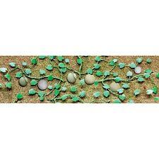 "6//pk 95575 JTT Scenery Watermelon Patch HO-Scale 1-1//3/"" High"