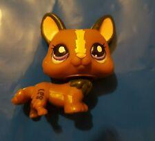Littlest Pet Shop LPS 1767 Chocolate & Brown Corgi Dog Puppy Purple Eyes