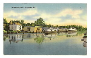 SALISBURY-MD-Wicomico-River-Boats-at-Dock-Vtg-Postcard