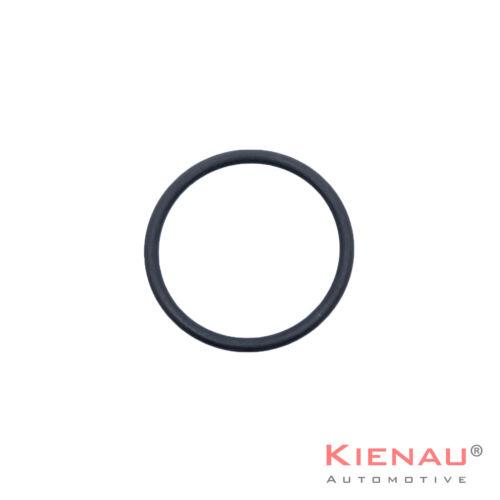 O-Ring Set Kit Dichtung für BMW Magnetventil Steuerventil Vanos N62 N62N N73 E60