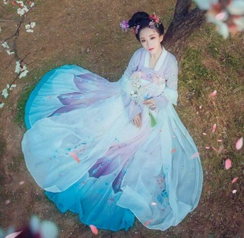 Vintage Womens Han Fu Classic Chinese Style Cosplay Embroidered Dance Dress Hot