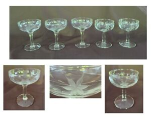 VINTAGE Champagne Glasses 4 oz. ETCHED FLORAL Clear 5-Piece Set