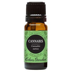 Cannabis Eden 39 S Garden Essential Oil 100 Pure Therapeutic Grade Ebay