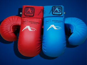 Arawaza WKF Approved Karate Mitt
